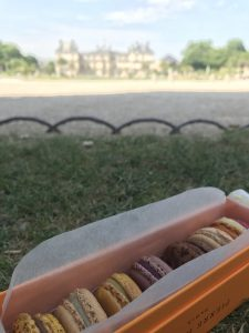 macarons in orange box on grass