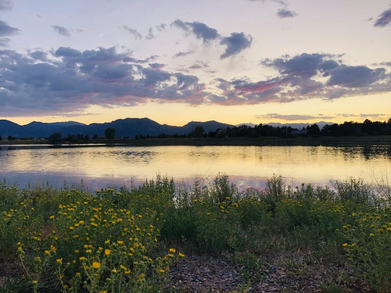 mountains with lake and flowers during sunset