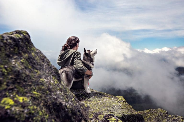 Siberian Husky Beside Woman Sitting on Gray Rock Mountain Hill While Watching Aerial View